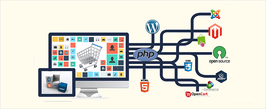 Ecommerce Website Design and Development Company Noida